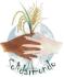 logo_solidarmondo_r70